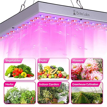 4. Brite Labs LED Grow Lights