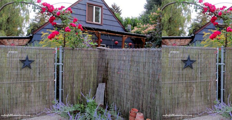 Best Bamboo Fencing