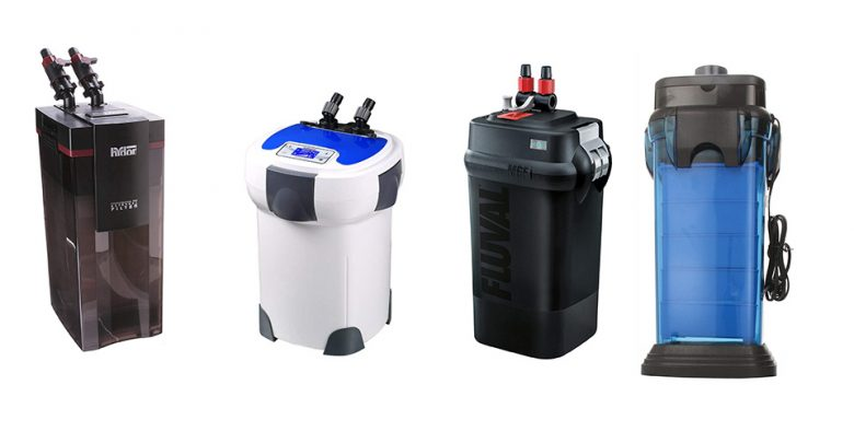 Best Canister Filter For Aquarium
