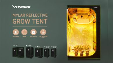 Best Grow Tents For Indoor Plant Growing