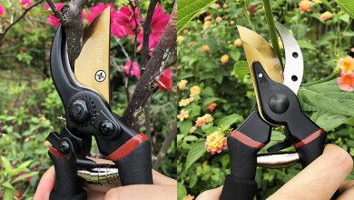 Best Hedge Shears For Trimming Your Decorative Plants