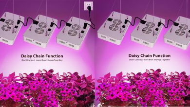 Best Led Grow Lights For Indoor Gardening