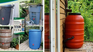 Best Rain Barrel Diverters For Lawn and Garden