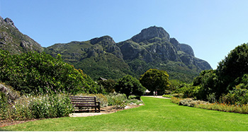 7. Kirstenbosch (Cape Town, South Africa)