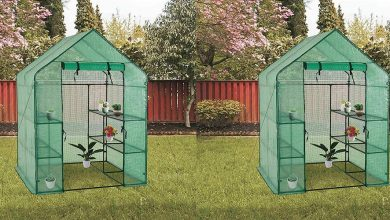 Best Greenhouse Kits For Protection for Your Plants