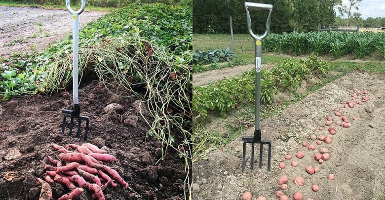 Best Heavy Duty Garden Fork