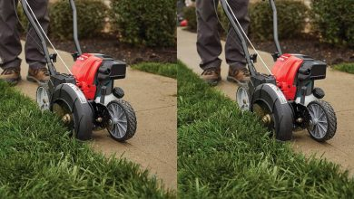 Best Lawn Edgers For Your Backyard